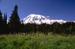 wildernessmntsbgfirstforhunters012914