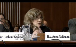 Director of Litigation, Anna Seidman gives testimony in Senate Hearing.